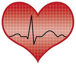 Krake 3 Herzen