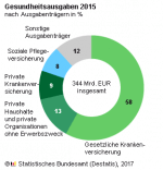 Gesundheitsaugaben Träger 2015